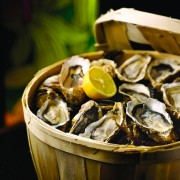 Grand Hyatt Singapore - Mezz0 Oyster Promotion