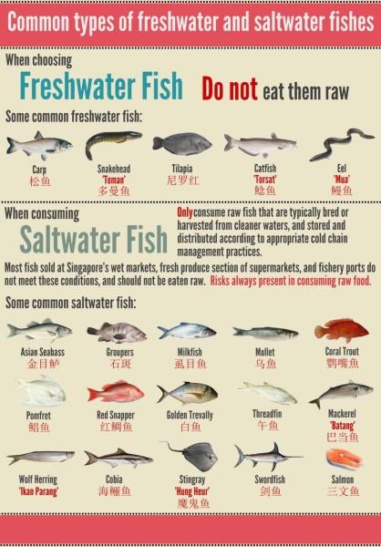 Giveaway Norwegian Salmon Yusheng - Lianhe Wanbao Freshwater and Saltwater Fish Chart